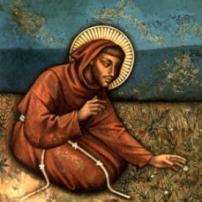 Franciscana Melo