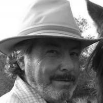 Renaud Hadef