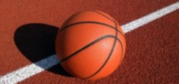 Europei di Basket 2013