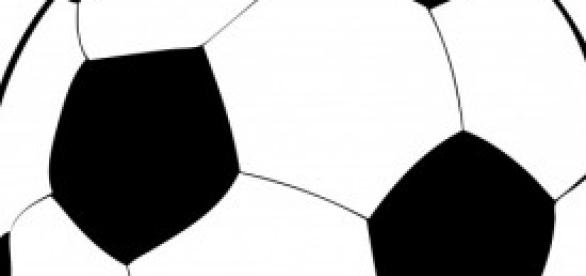 Tutto sulla Lazio 2013/14, per l'Europa League.