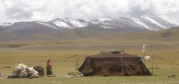 Nómadas en la meseta del Tíbet (P. Roelli)