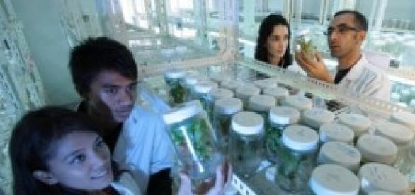 Dados sobre investigação científica em Portugal.