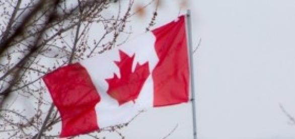Tiroteio na capital do Canadá leva a alerta máximo
