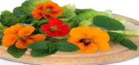 Flores Comestíveis (Foto: Luciana Harfenist)