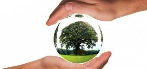 Dicas de atitudes ecológicas