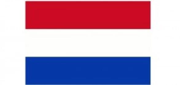 Gripe das aves chega à Holanda