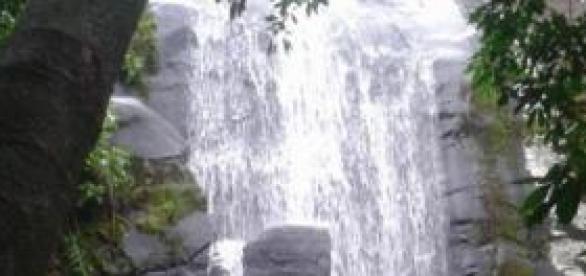 Cachoeira dos 3 Tombos: imersão com a natureza