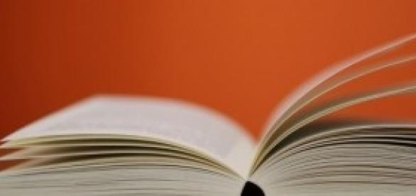 Literatura e cultura negra na Flink Sampa