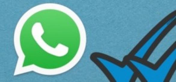 Como evitar el doble tick azul en WhatsApp