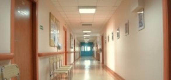 Legionella já infectou 70 pessoas em Portugal.