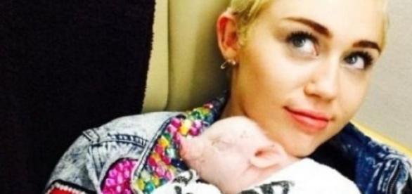 Miley Cyrus y sus seis mascotas.