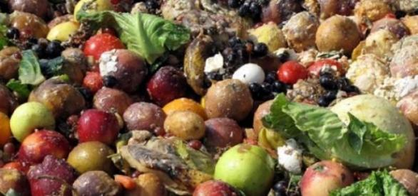 O desperdício de comida atinge o mundo todo