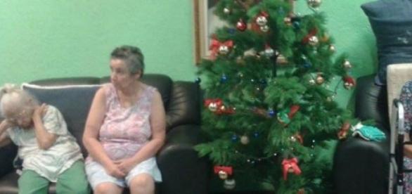 Arvore de Natal no Lar Vicentino une idosos