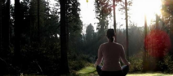 Woman meditating amongst nature