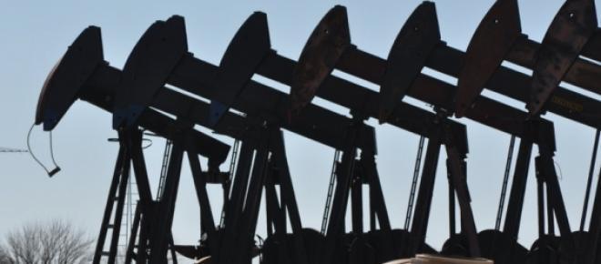 massive field oil pumpjacks