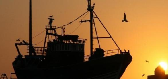 Barco de pesca industrial