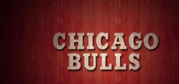 Logo de los Chicago Bulls