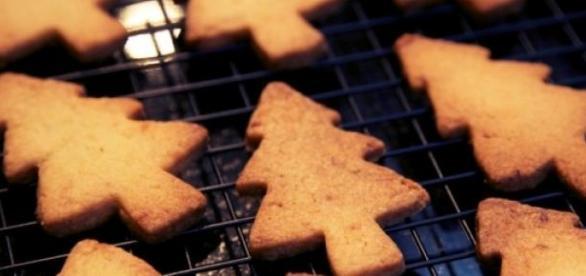 Biscoitos de limão combinam na perfeição com chá.