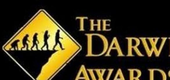 Algunos de los Premios Darwin 2014
