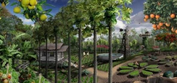 Permacultura se ocupa cu ingrijirea pamantului