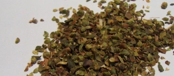 'Origanum vulgare', nombre científico del orégano
