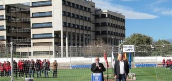 Campo y Facultad de Farmacia en el fondo (UV)
