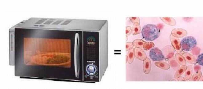 Tus alimentos se pueden transformar