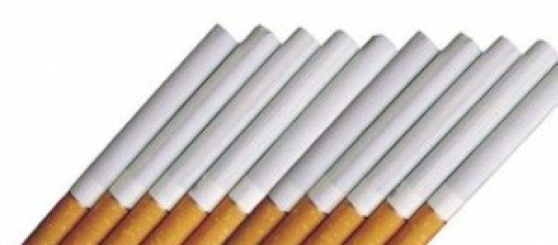 Prezzo sigarette in calo costo diminuito per alcune for Pianta di bosso prezzo