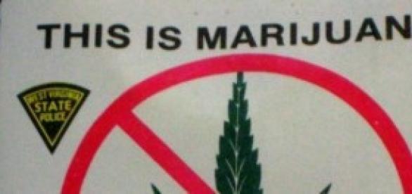 La Cannabis sarà prescritta dal medico di base