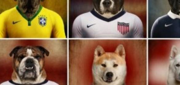 Selecciones del Mundial caninas