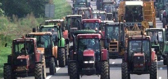 Le monde rural sera dans la rue le samedi 28 juin à FOIX