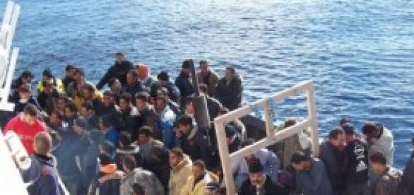 5000 immigrati sbarcati sulle nostre coste.