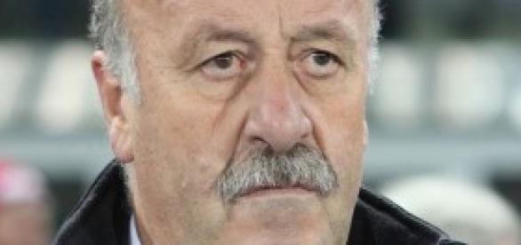 Vicente del Bosque, entrenador de la Roja