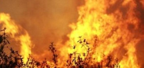 Volta o flagelo dos incêndios de Verão