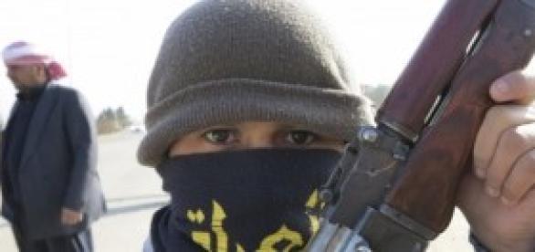 Sondaggi politici: invio di armi in Iraq