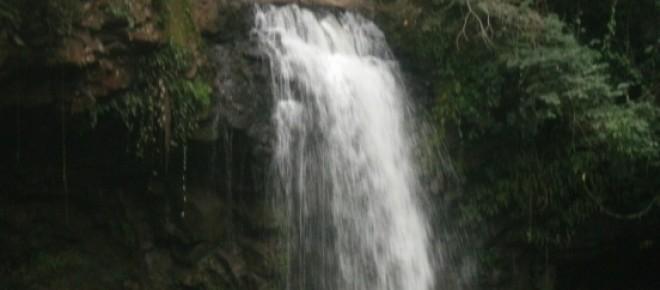 Ecologia, água, cachoeira.