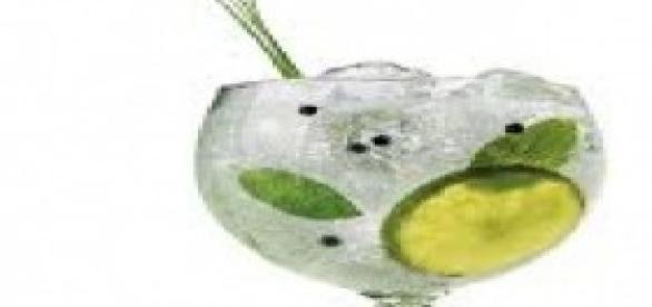 """Tomar un gin-tónic es lo más """"in """""""