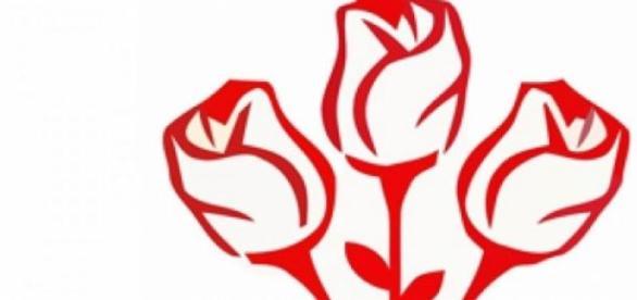 partidul social democrat roman