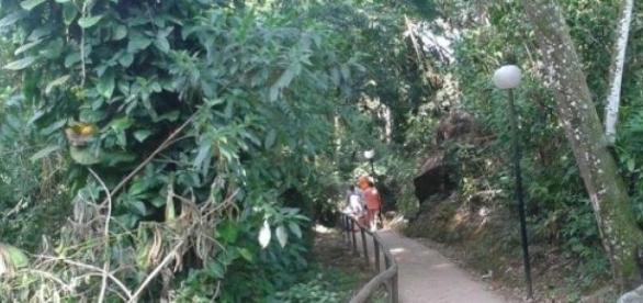 Turistas desbravam trilhas em Ilhabela neste verão