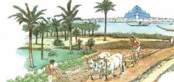 agricultura, piatră de temelie a societății