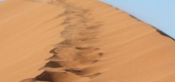 Dunele de nisip din Desertul Kalahari