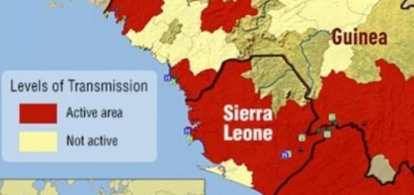 Focos primarios de la infección por Ébola