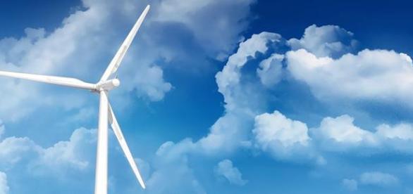 Windige Geschäfte oder Zukunft als Genossenschaft?
