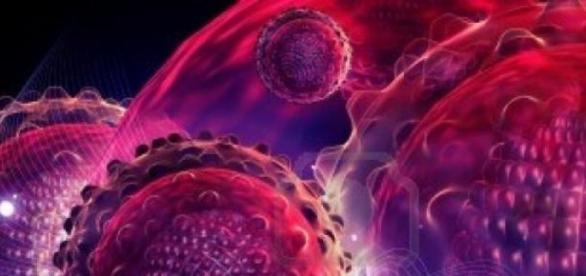 Hepatita A poate fii prevenita