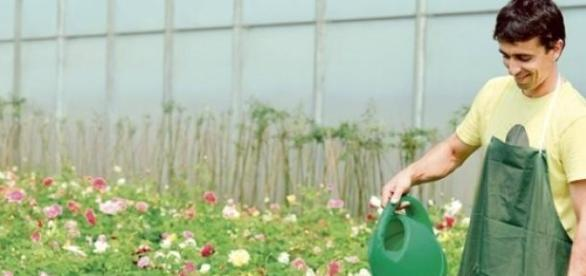 Ministerul Agriculturii sprijina tinerii fermieri