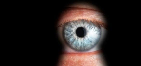 Agentia de Spionaj Canada
