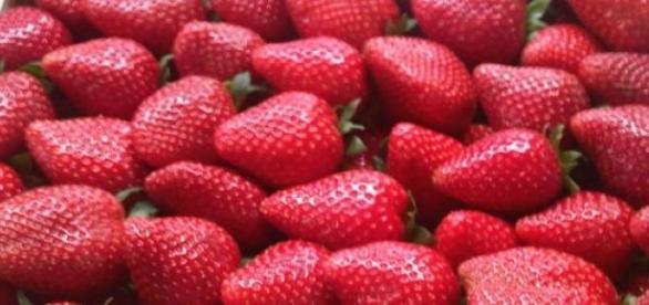 fibre, diete, sanatate, stomac