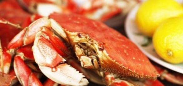 El cangrejo, un deleite de la cocina mexicana