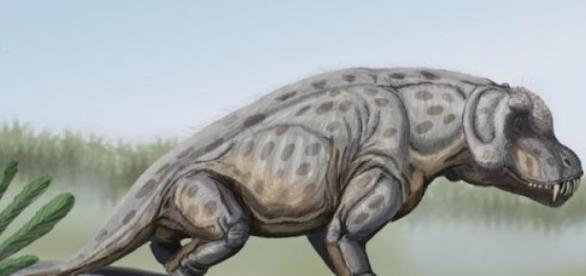 Hubo varios extraños animales en la prehistoria