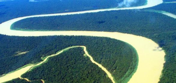 Região Amazônica ocorre maioria dos assassinatos